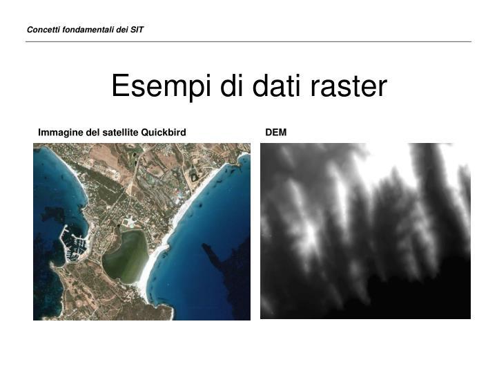 Esempi di dati raster