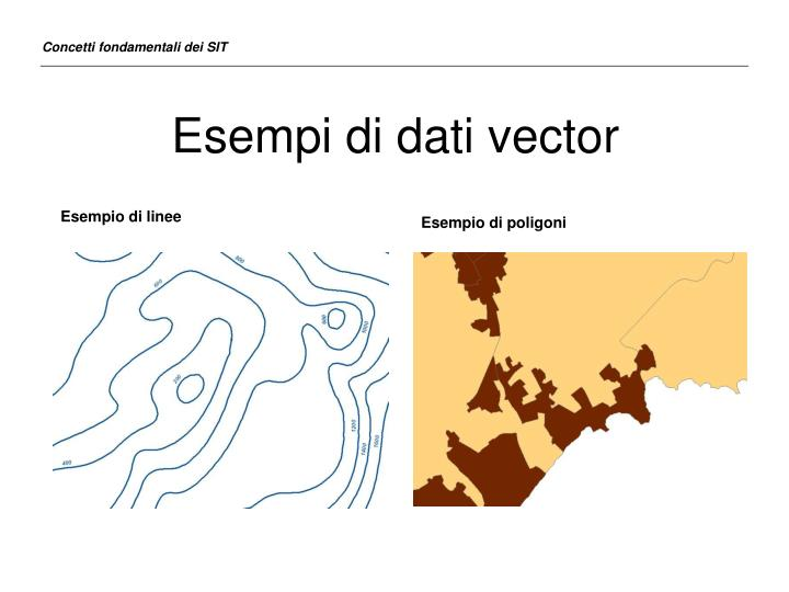 Esempi di dati vector