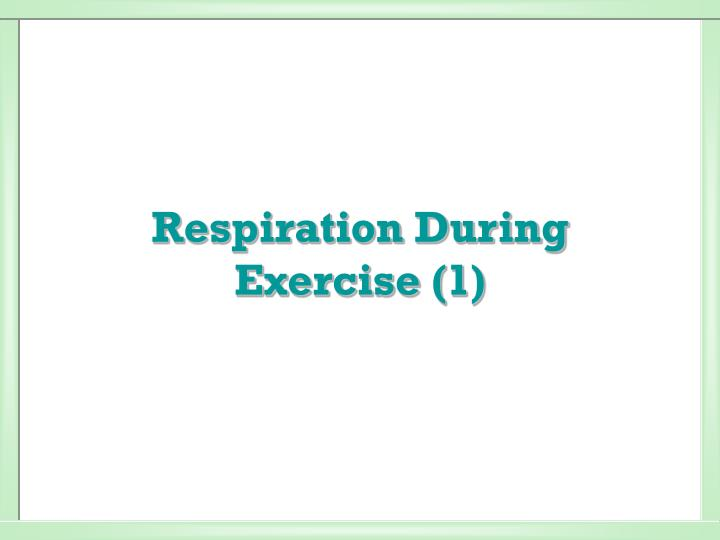 respiration during exercise 1 n.