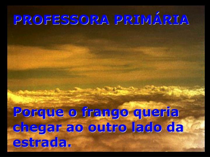 PROFESSORA PRIMÁRIA