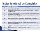 ndice funcional de karnofsky