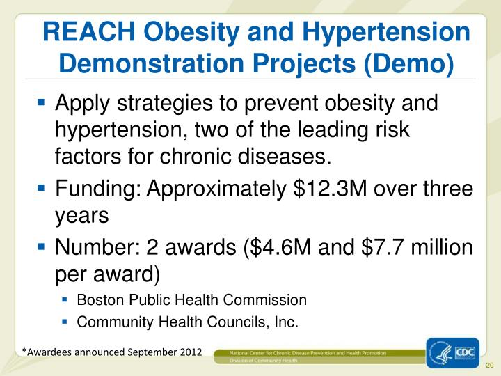 REACH Obesity and Hypertension Demonstration Projects (Demo)