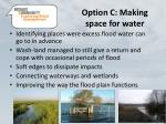 option c making space for water