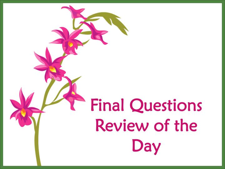 Final Questions Review of the Day