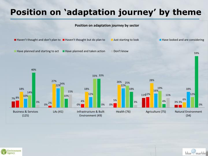 Position on 'adaptation journey' by theme