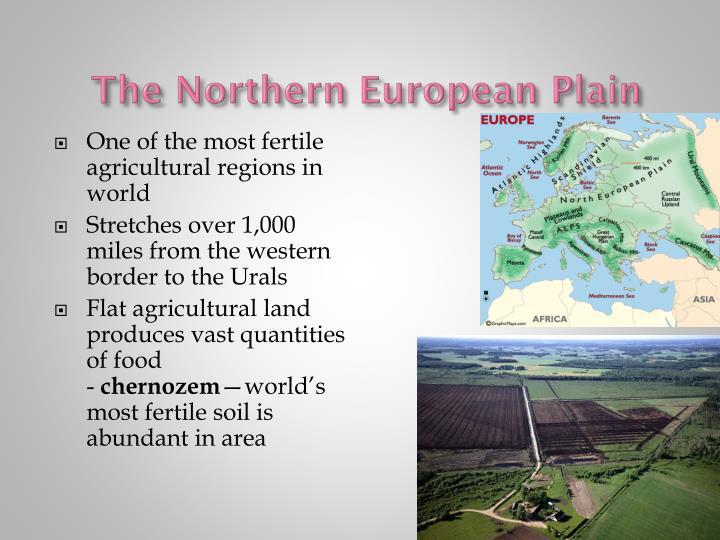 The Northern European Plain