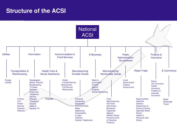Structure of the ACSI