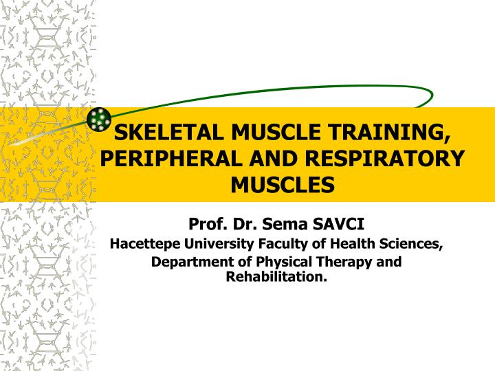 skeletal muscle training peripheral and respiratory muscles n.
