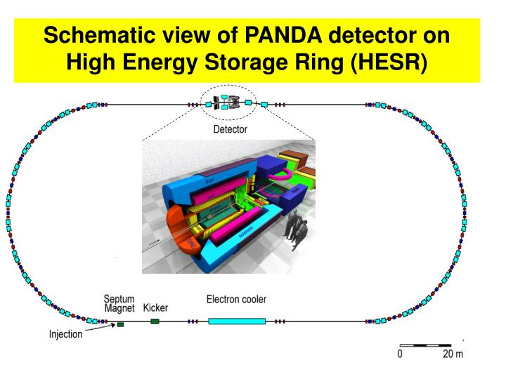 Schematic view of PANDA detector on High Energy Storage Ring (HESR)