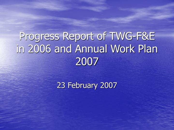 progress report of twg f e in 2006 and annual work plan 2007 n.