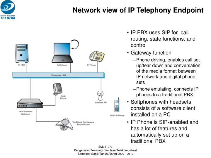 Network view of IP Telephony Endpoint