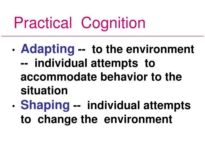 Practical  Cognition