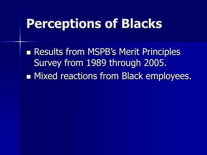 Perceptions of Blacks