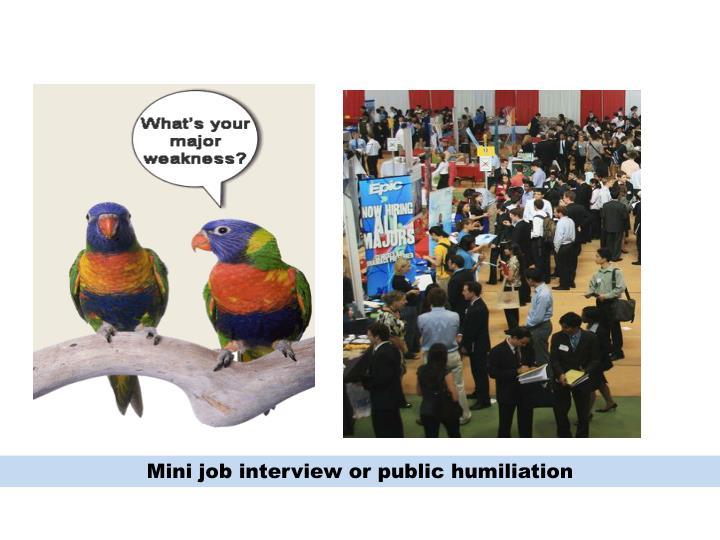 Mini job interview or public humiliation