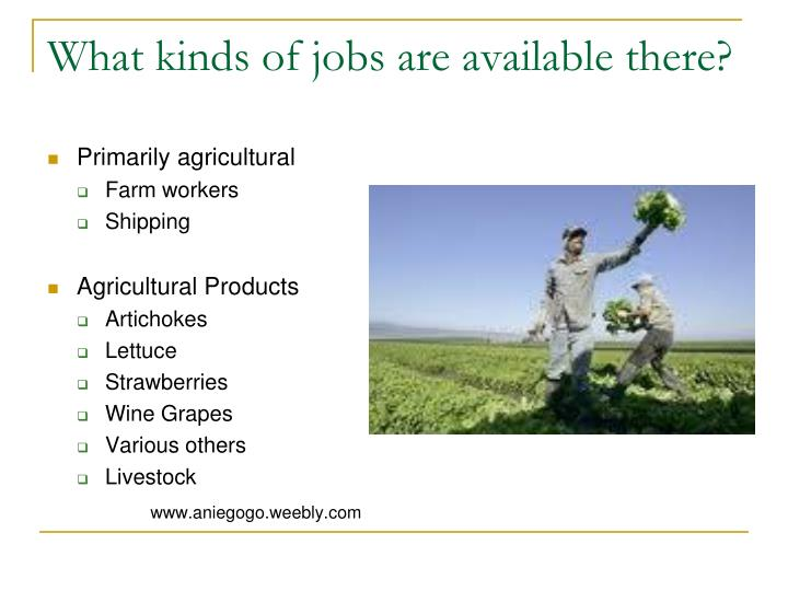 What kinds of jobs are available there