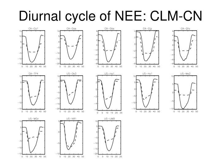 Diurnal cycle of NEE: CLM-CN