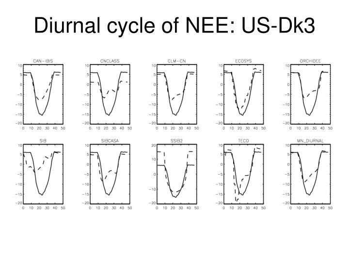 Diurnal cycle of NEE: US-Dk3