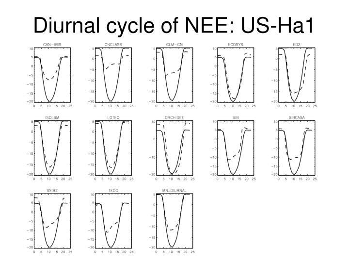 Diurnal cycle of NEE: US-Ha1
