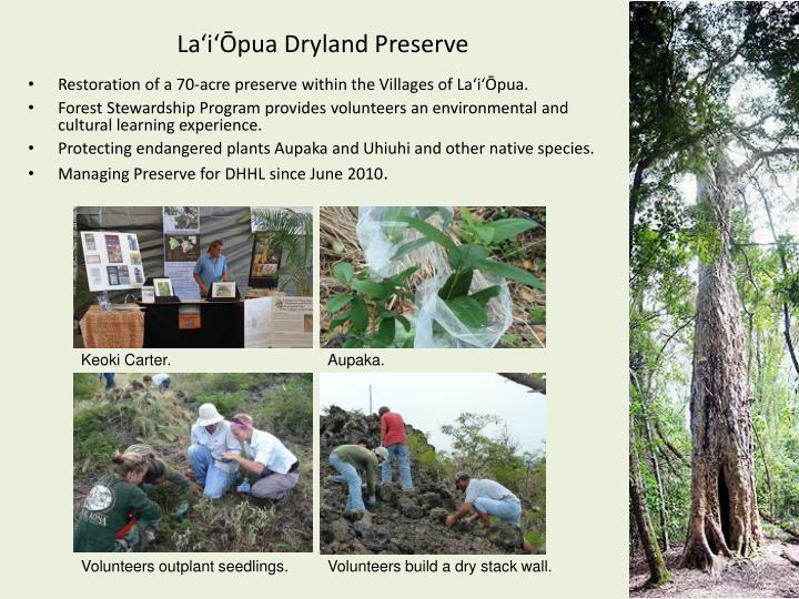 La'i'Ōpua Dryland Preserve