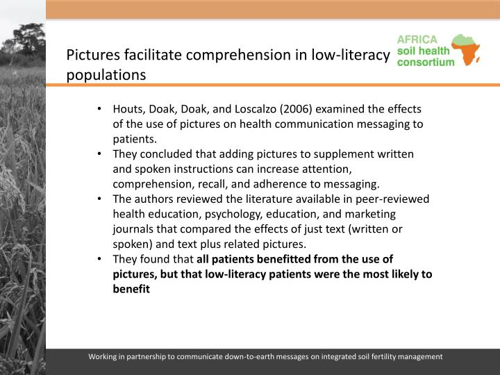 the effects of a low literacy Literacy in new york low literacy and limited english proficiency among parents is the strongest predictor of children's inability to thrive academically.