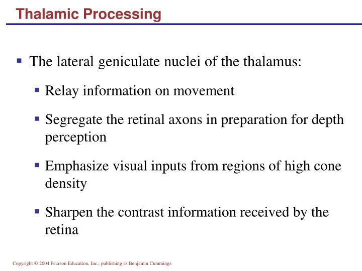 Thalamic Processing