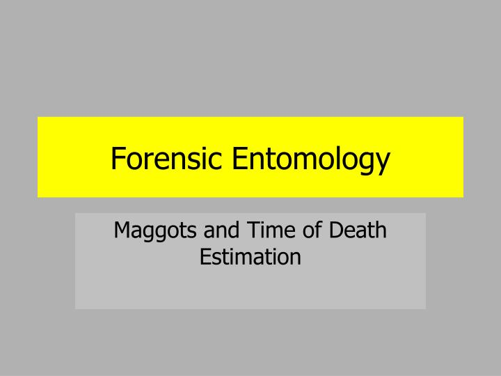 Ppt Forensic Entomology Powerpoint Presentation Free Download Id 1772865