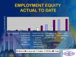 employment equity actual to date