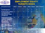 employment equity targets 2005 6