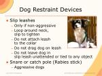 dog restraint devices