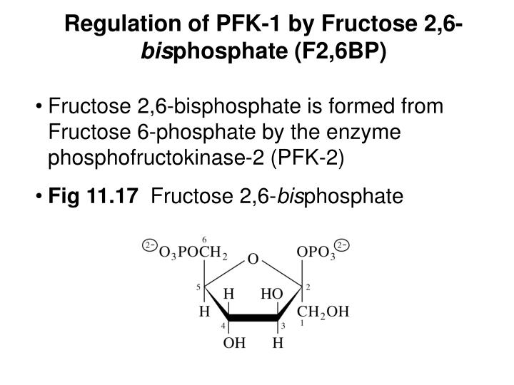 Regulation of PFK-1 by Fructose 2,6-