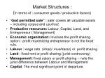 market structures in terms of consumer goods productive factors1