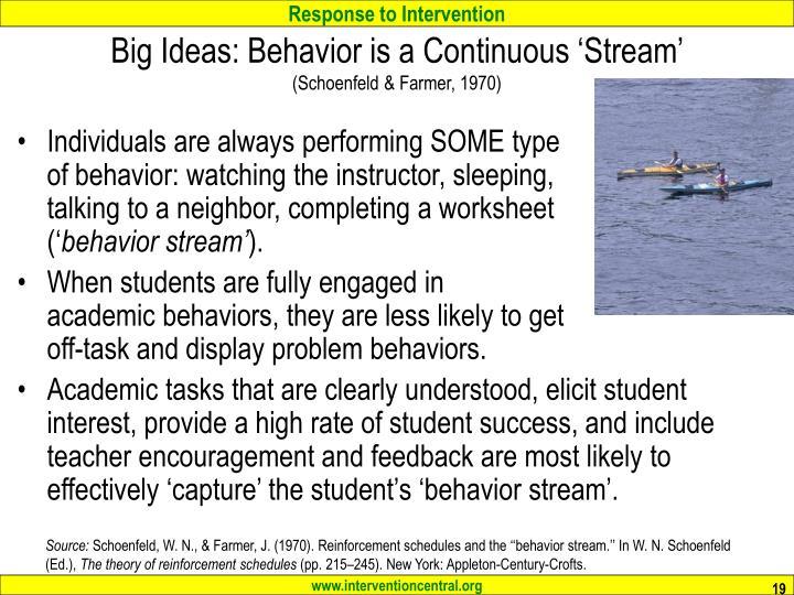 Big Ideas: Behavior is a Continuous 'Stream'