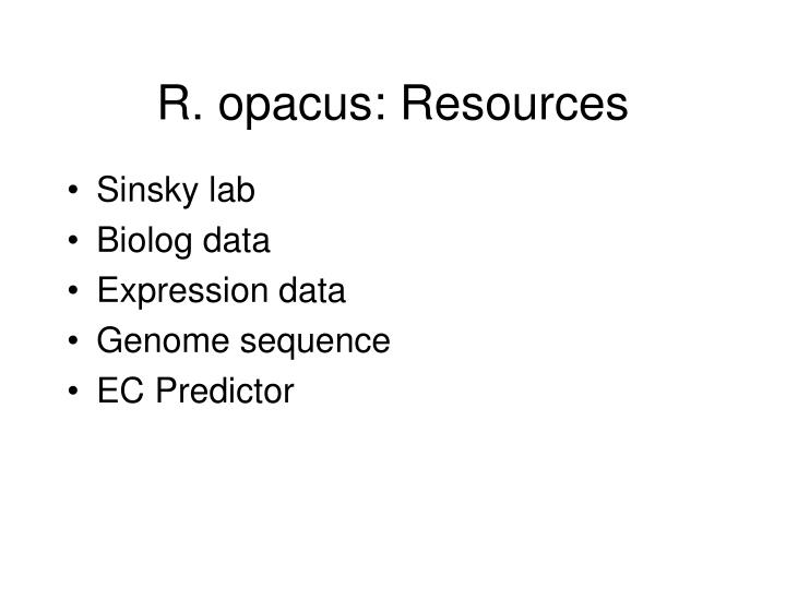R. opacus: Resources
