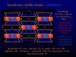inosilicates double chains amphiboles3