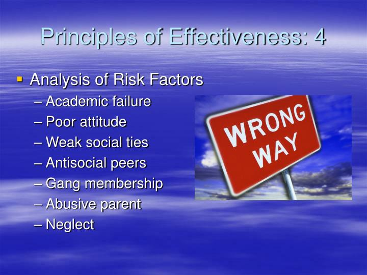 Principles of Effectiveness: 4