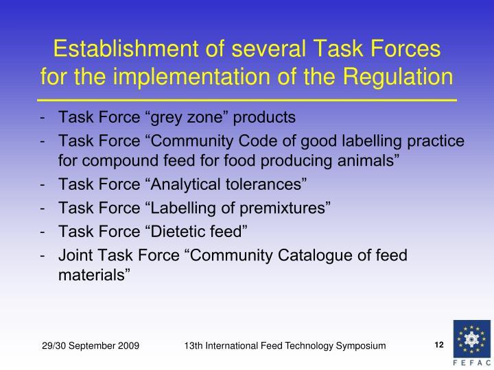 Establishment of several Task Forces for the implementation of the Regulation