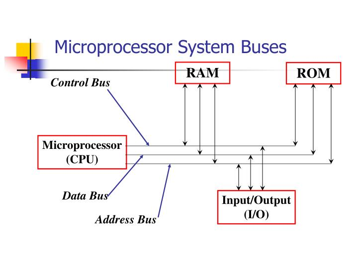 Microprocessor System Buses