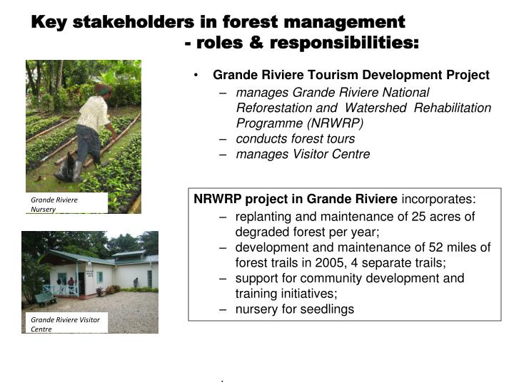 Key stakeholders in forest management