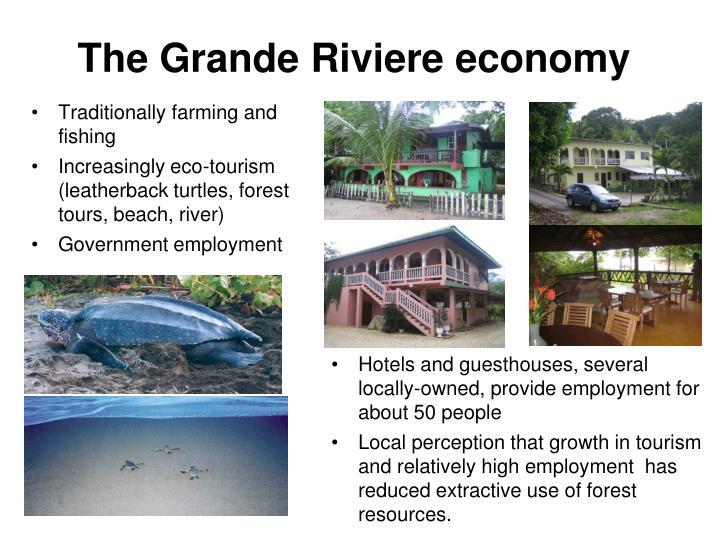 The grande riviere economy
