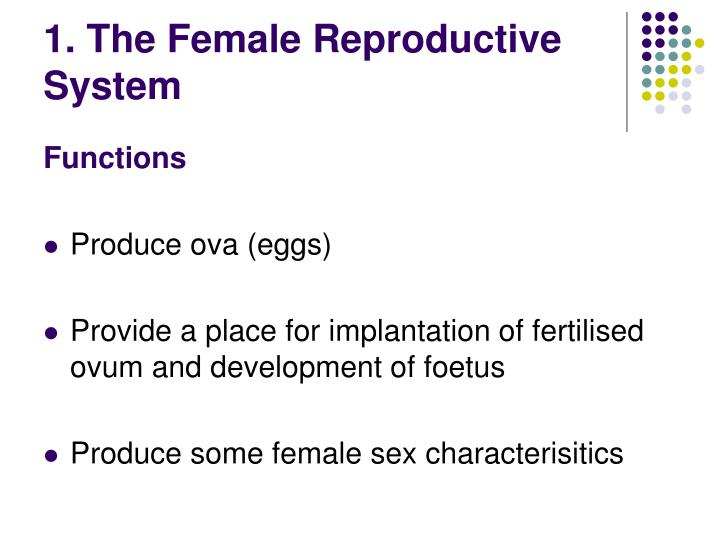 Ppt Female Male Reproductive Systems Powerpoint Presentation