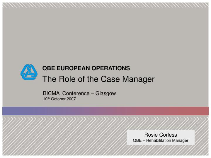 the role of the case manager n.