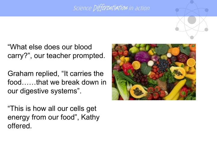 """What else does our blood carry?"", our teacher prompted."