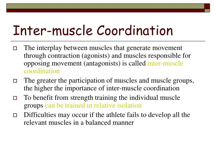 Inter-muscle Coordination