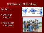 unicellular vs multi cellular