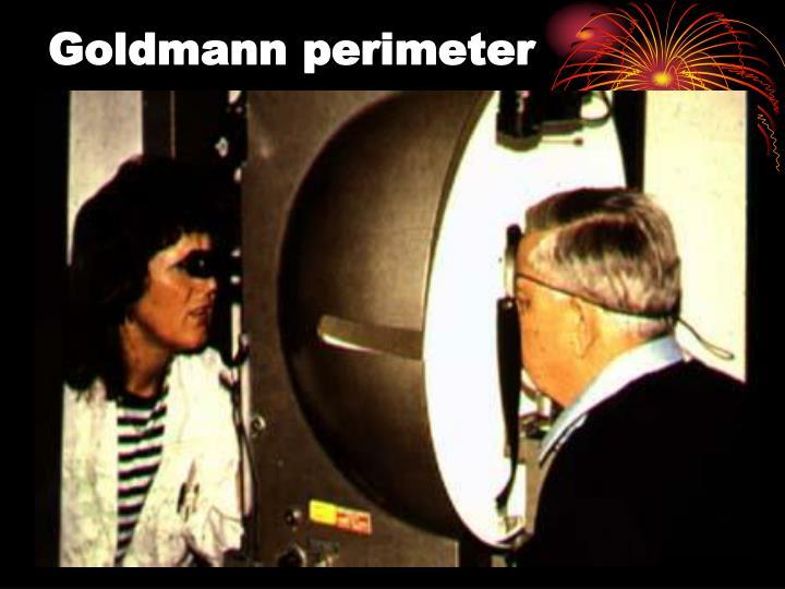 Goldmann perimeter