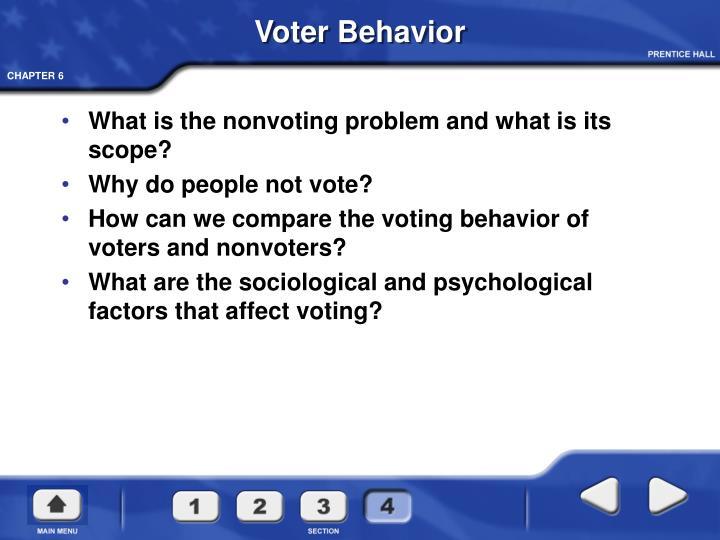 Voter Behavior