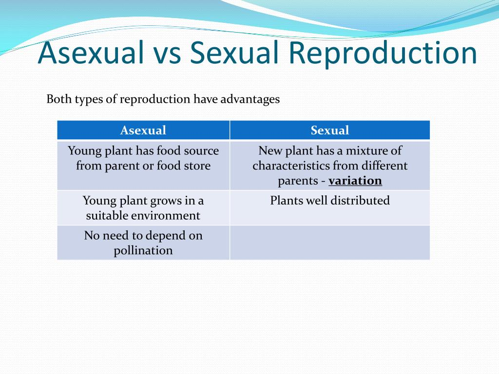 Types Of Cellular Reproduction Note Guide