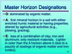 master horizon designations
