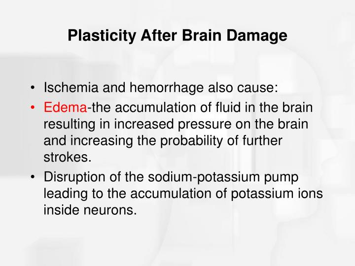 Plasticity After Brain Damage