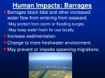 human impacts barrages